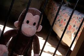 1-28 monkey