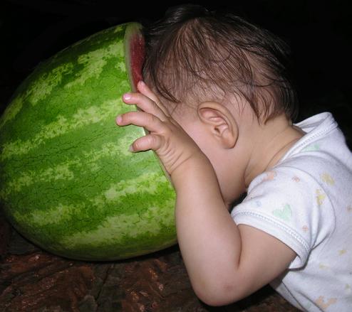 watermelon-dive-1325915